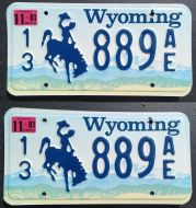 WYOMING 2001 PAIR